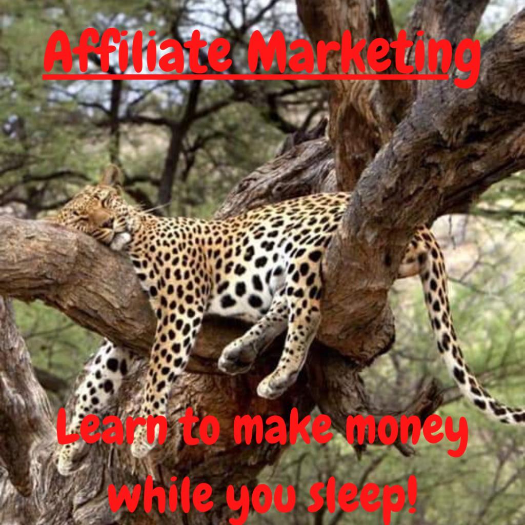 Online Benjamins, Affiliate Marketing