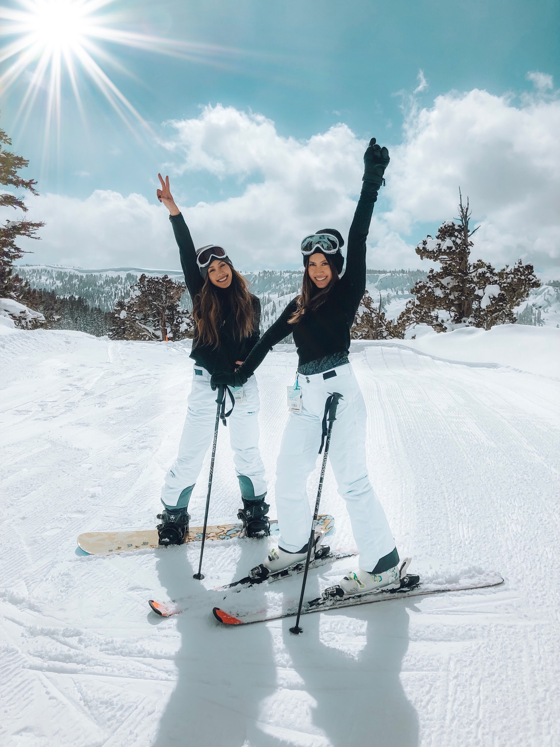skiing - online skiing business